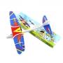 DoubleWingAircraft